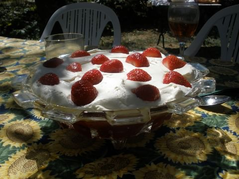 A photo of Kathleen's trifle.