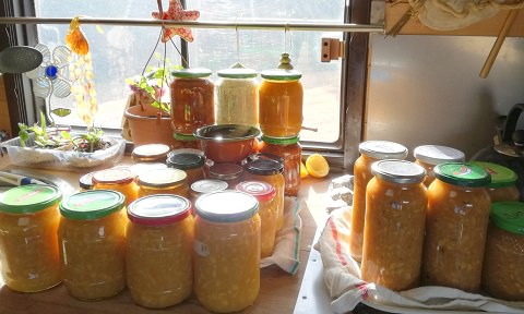 Orange jam production