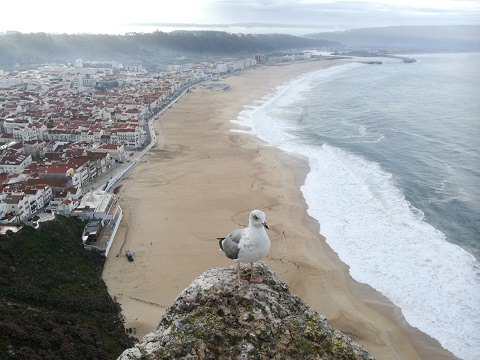 Looking down to Praia from Sitio, Nazare