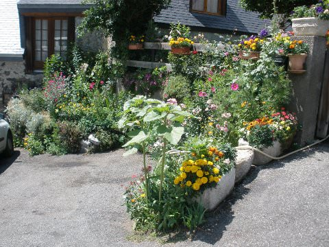 A photo of a flower garden in Aulon.