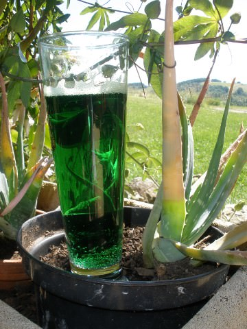 A photo of a green beer.