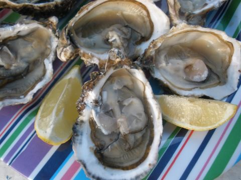 A photo of a plate of fresh oysters.